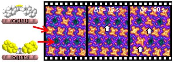 Research AK Marbach (image: Marbach)