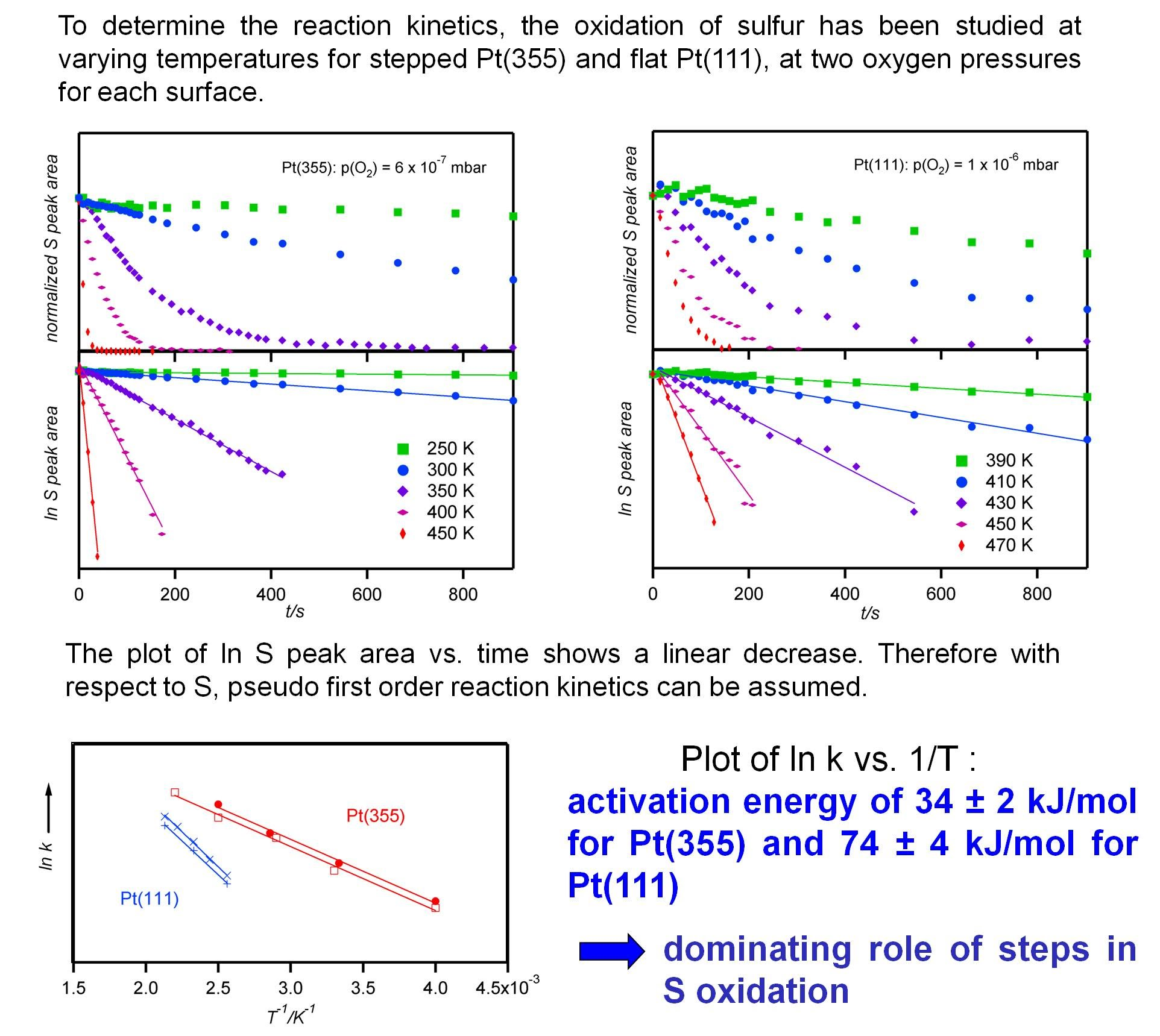 isothermal experiments (Image: Papp)