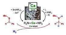 "Zum Artikel """"Ca""-talysis: Catalysis with Calcium"""