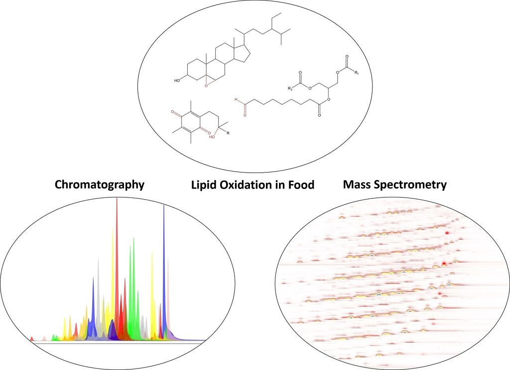Title picture showing the main focus of the research group: Lipid oxidation in food, chromatography and mass spectrometry