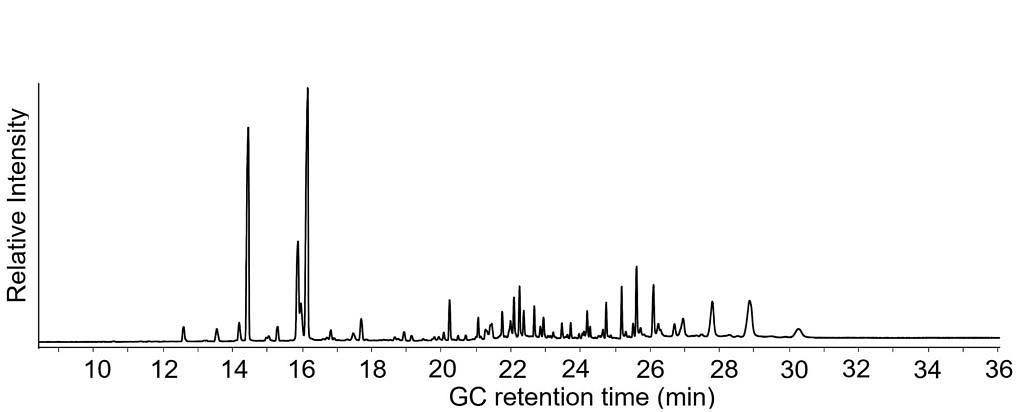 GC-MS chromatogram of an archaeological lipid extract showing a high number of signals which demonstrates the complexity of the sample