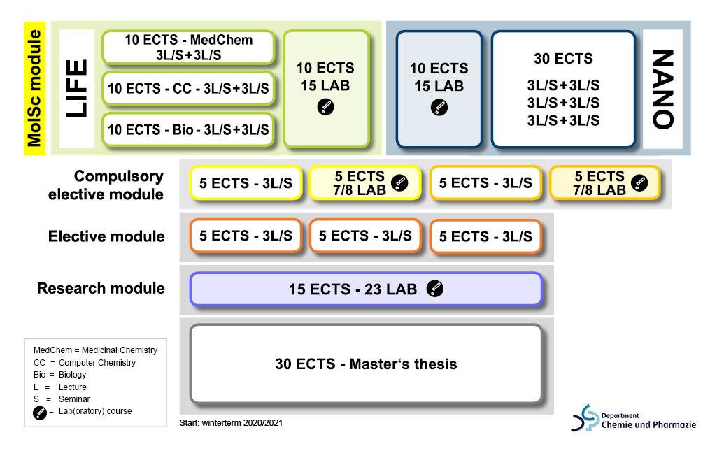 Structure of the MSc MolSc program (Design: E. Landeck/FAU)