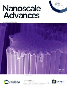 SnO2 nanotube electrde